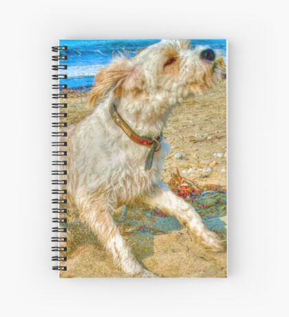 She shakes sea spray on the seashore Spiral Notebook