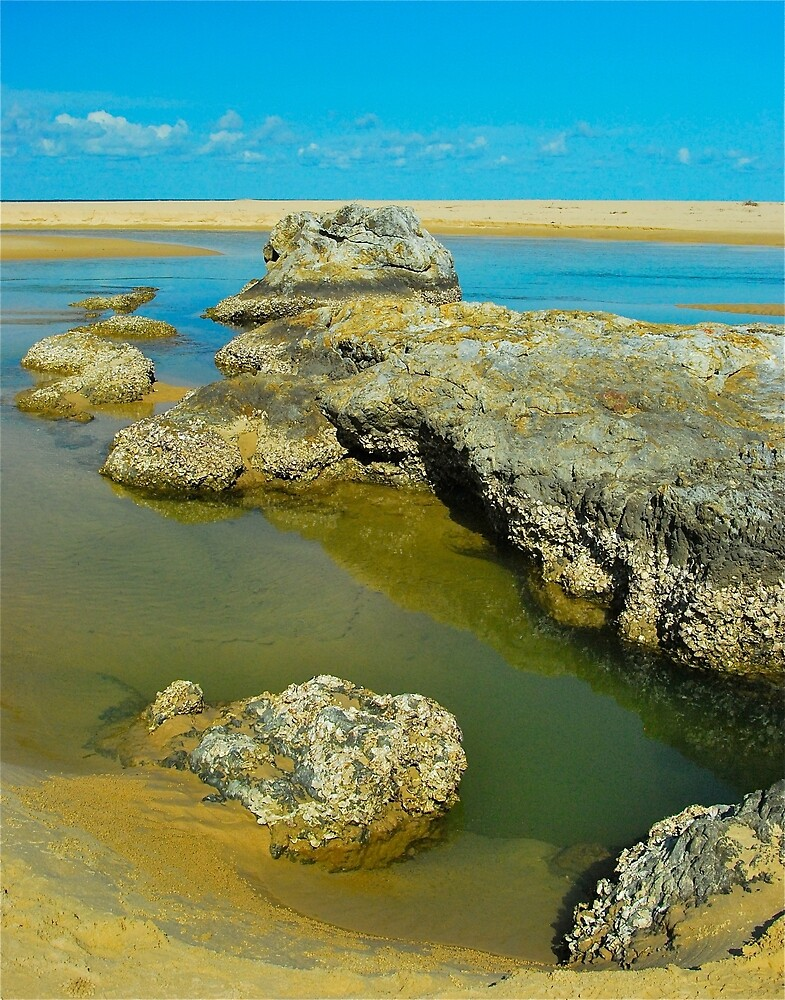 Boambee Beach Rock Pool by Penny Smith