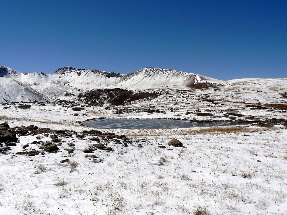 Snow on Independence Pass by Graeme  Hyde