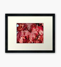 RED Autumn Leaves Art Prints Fall Trees Framed Print