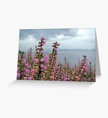 Heather in full bloom Greeting Card