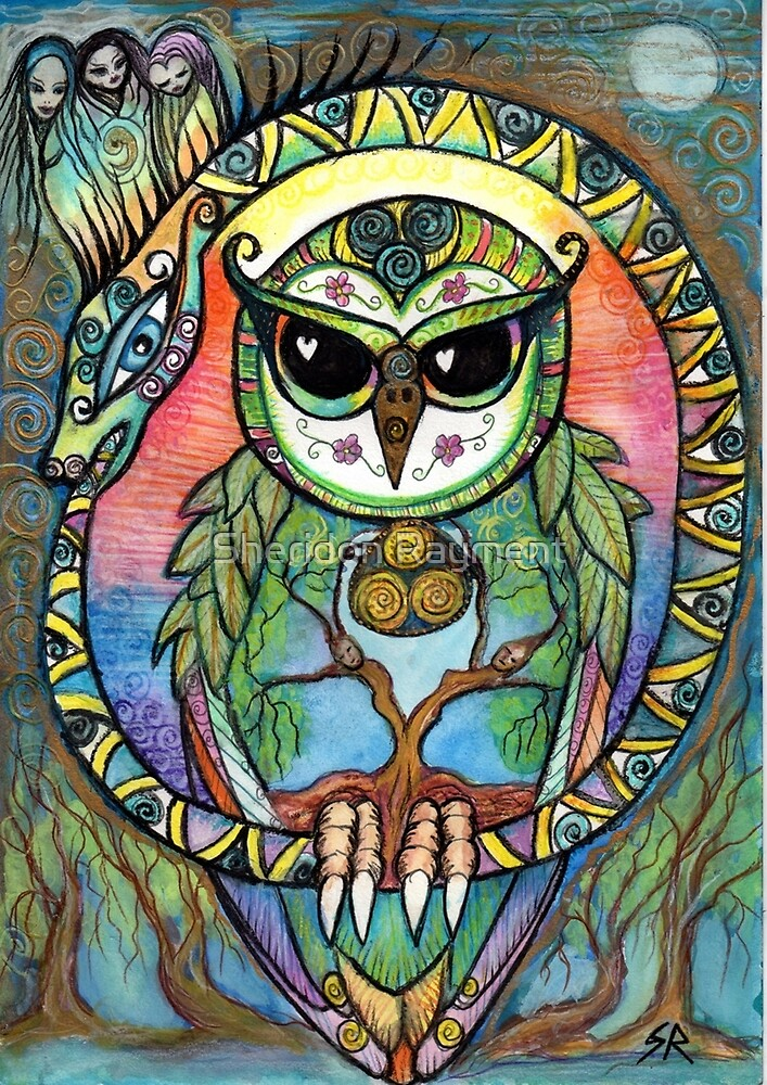 Ouroboros Owl by Sheridon Rayment by Sheridon Rayment