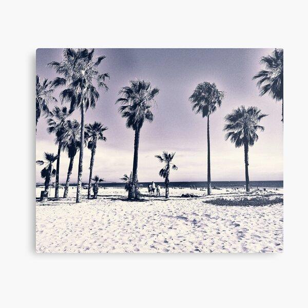 Cali Palms B|W Metal Print