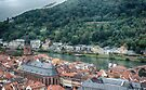 View from Heidelberg Castle by Imagery