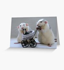 A nice day out! Greeting Card