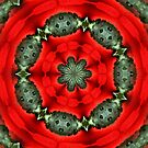 Red And Green Circles Pattern by SmilinEyes