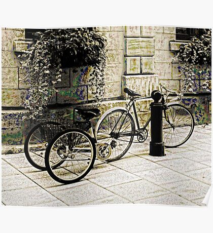 Tandem Bicycle and Flowers Poster