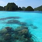 Lagoon at Wayag by Reef Ecoimages