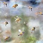 My Lovely Bees by Betsy  Seeton