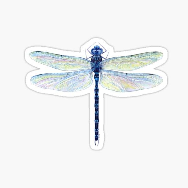 Spatterdock Dragonfly Sticker