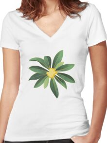 Loquat medlar tree in Autumn I Women's Fitted V-Neck T-Shirt