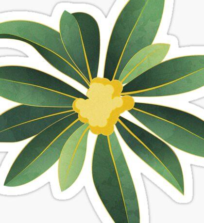 Loquat medlar tree in Autumn I Sticker