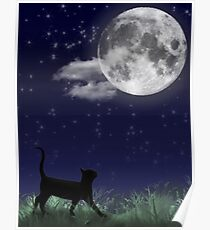 Cat and the Moon 1/6 Poster