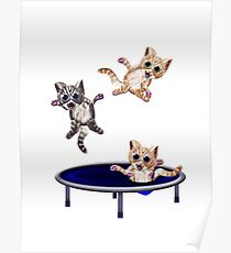 trampolining pussie's Poster