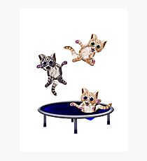 trampolining pussie's Photographic Print