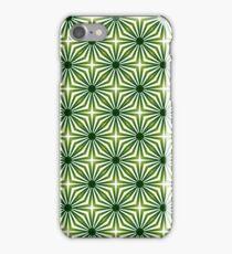 Everglades iPhone Case/Skin