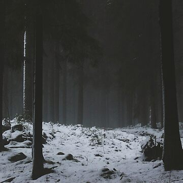 The Whispering Forest by MyColdHands