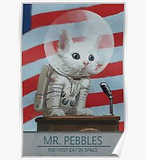 Mr. Pebbles The First Cat In Space Poster