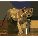 Lioness by David  Kennett