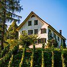Switzerland by Melissa Fiene