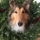 Rough Collie Christmas Wreath by Jan  Wall