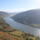 The Douro Valley by Glenn Browning