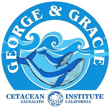 George And Gracie (Cetacean Institute) : Inspired by Star Trek IV : The Voyage Home by WonkyRobot