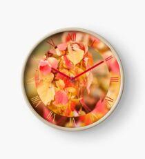 Parthenocissus quinquefolia leafy vine Clock