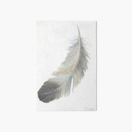 Feather in grey - study Art Board Print