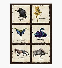 Fantastical Creatures Photographic Print