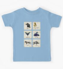 Fantastical Creatures Kids Clothes