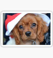 Christmas Puppy Sticker