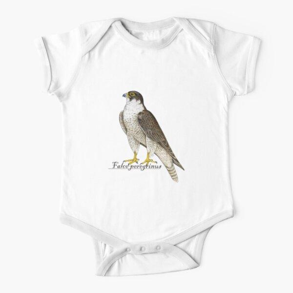 Peregrine Falcon (Falco peregrinus) Short Sleeve Baby One-Piece