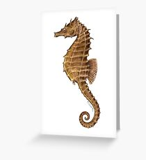 Northern Seahorse (Hippocampus hudsonius)  Greeting Card