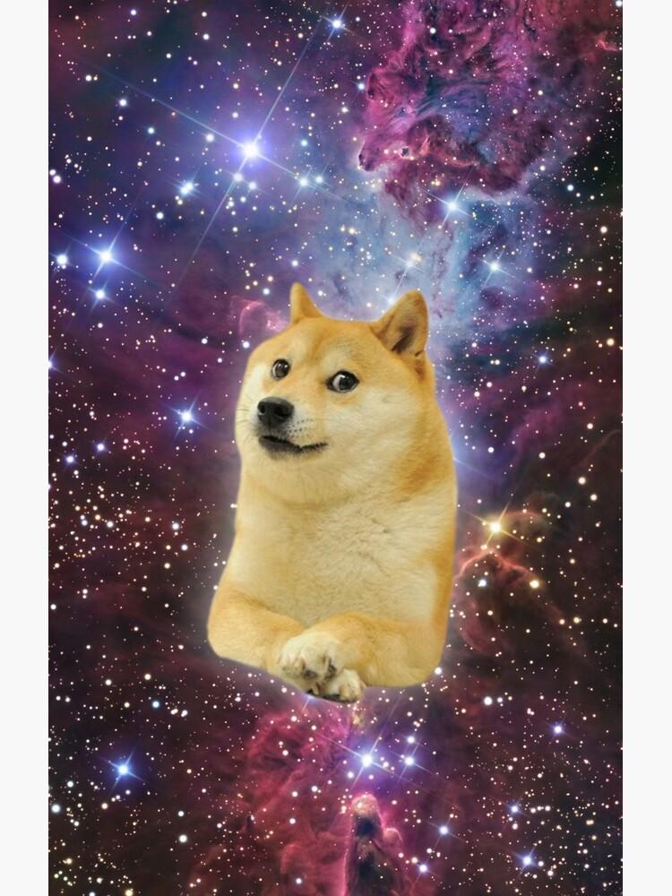 doge space skins von brandoncashroll