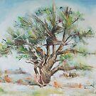 HOLLY TREE by jovica