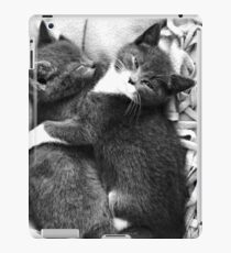 Russian Blue X Kittens iPad Case/Skin