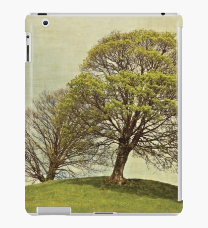 On top of the hill iPad Case/Skin
