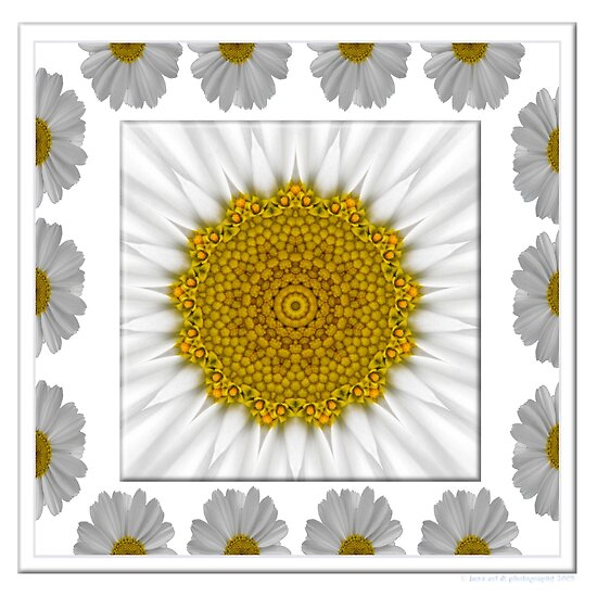 Daisy framed kaleidoscope by Jan  Tribe