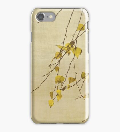 Transformation iPhone Case/Skin