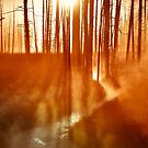 Fiery Dawn by cheezeT
