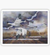 Geese in the Skagit Valley Sticker