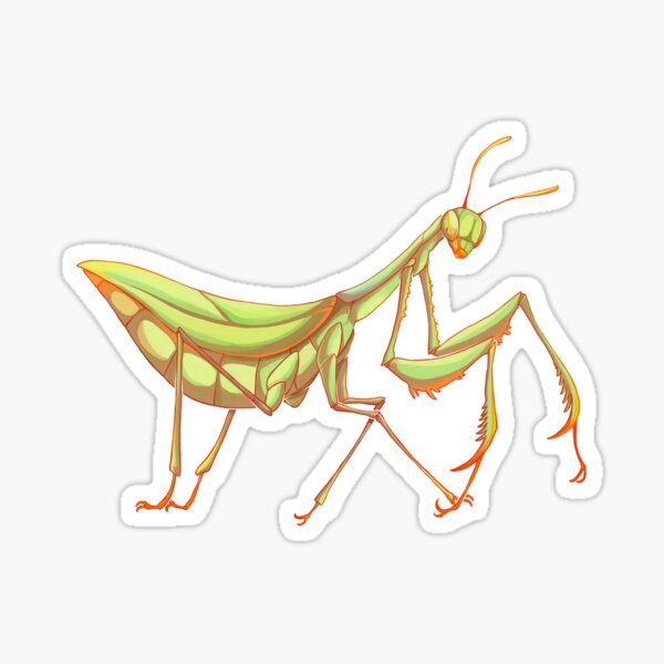 Mantis Sticker