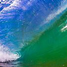 In the Barrel of the Wave by Alex  Bramwell