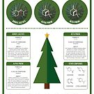 The Aroma of Christmas Trees by Compound Interest