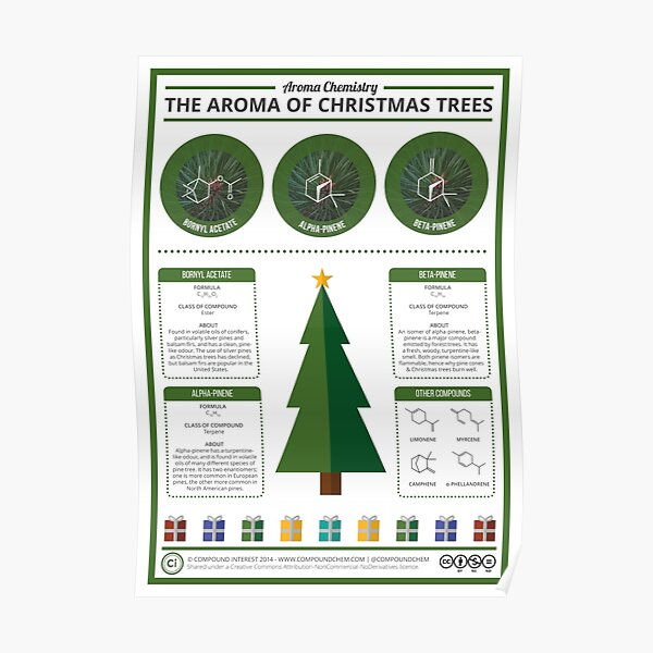 The Aroma of Christmas Trees Poster