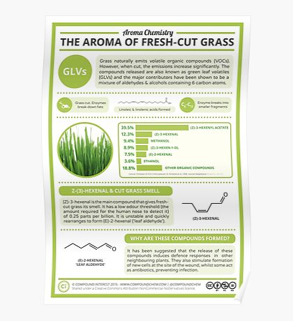 The Aroma of Fresh-Cut Grass Poster