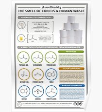 The Smell of Toilets Poster