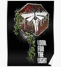 Look For The Light Poster