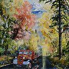 Autumn in Snowdonia by Joe Trodden